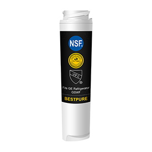 Fridge Water Filter Compatible with GE GSWF
